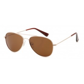 Carducci CD1030 Sunglass Gold