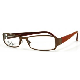 Collection C8308 Brown *