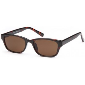Solo W32 Sunglass Brown