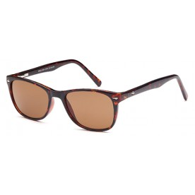 Solo W34 Sunglass Brown